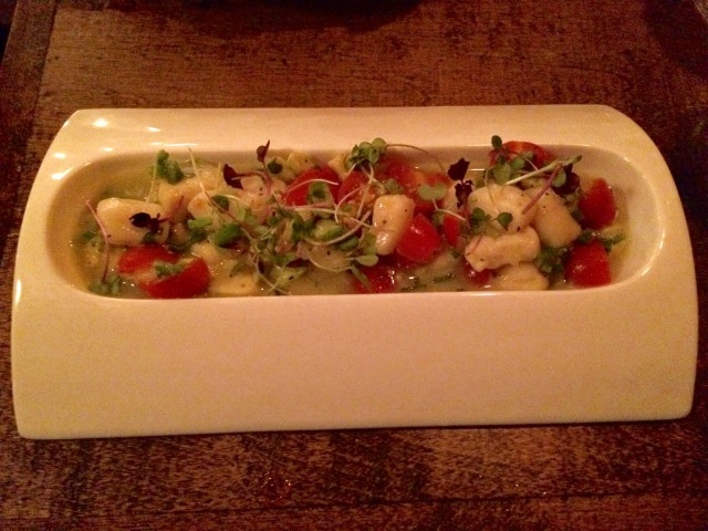 Upstate bay scallop ceviche